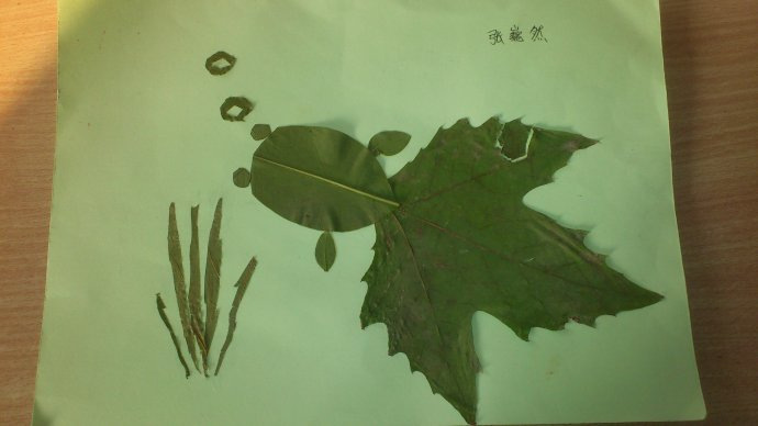 树叶贴画作品